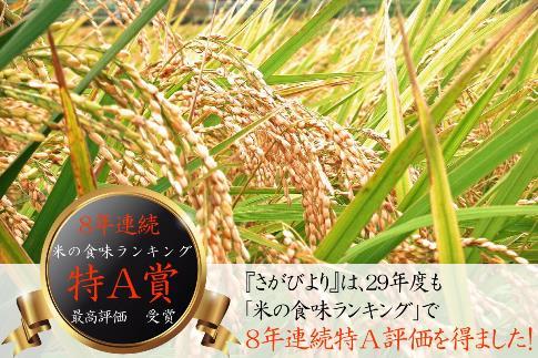 【H30年収穫米】佐賀県産『さがびより(精米20kg)』