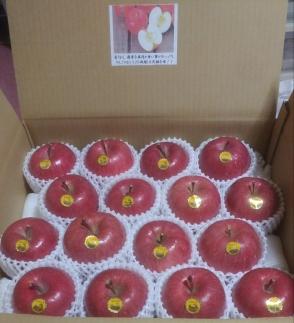 【先行受付】超完熟りんご「弘前産ふじ16個」