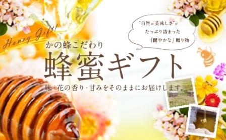 国産里山蜂蜜【500g×2本】セット 養蜂一筋60年自慢の一品