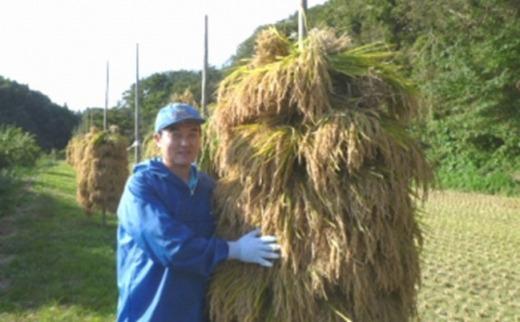 人気沸騰の米岩手県奥州市産ひとめぼれ白米玄米も可20kg