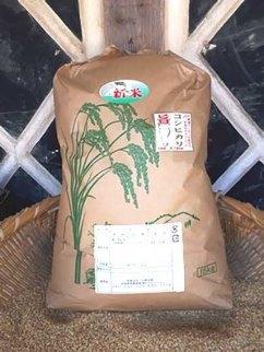 ★平成30年産★美浦の逸品「本橋さんちの1等米コシヒカリ」玄米15kg【15㎏】