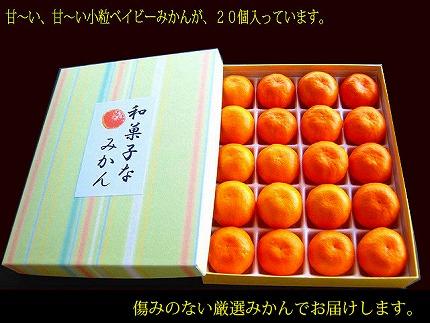 【観音山フルーツガーデン】和菓子なみかん 3kg