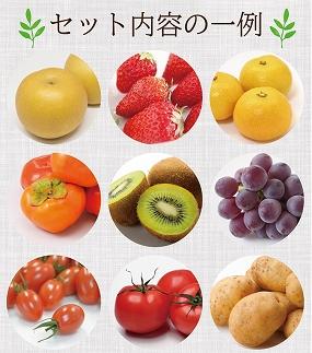豪華!野菜セット定期便年6回【偶数月コース】旬の野菜・フルーツ・キノコを15品目盛り合わせ!