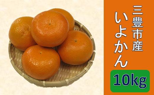 【ポイント交換】三豊市産いよかん10kg