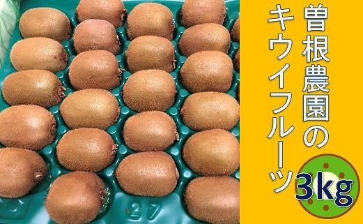 【ポイント交換】曽根農園のキウイフルーツ3kg