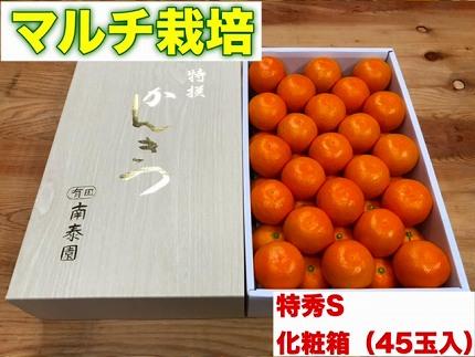 【マルチ栽培・有田みかん】化粧箱『特秀』Sサイズ45玉入
