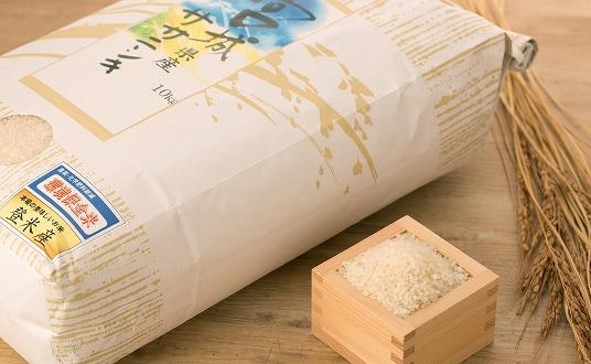 平成30年宮城登米産 減農米「ササニシキ」10kg