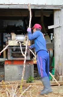 沖永良部島手作り純黒糖 やじ豆 みそピーナツ 自家農園栽培サトウキビ使用の元気の源セット