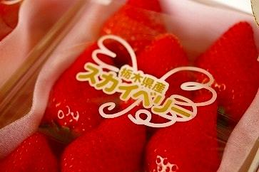 【期間限定】栃木の新品種!「スカイベリー」