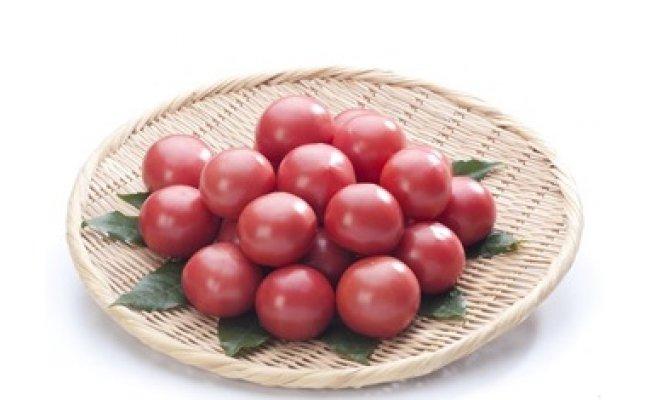 塩熟トマト KitachiROSSO 600g(3月発送)