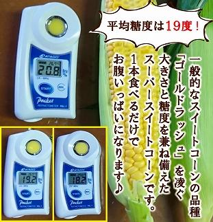 【ビッグサイズ】スーパースイートコーン「おおもの」約3.5kg