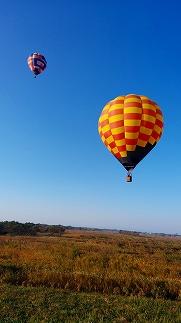 【年間15組(1日1組)限定】渡良瀬遊水地熱気球遊覧飛行搭乗体験