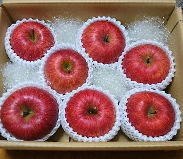 百年木の香 三上農園 旬のりんご2キロ