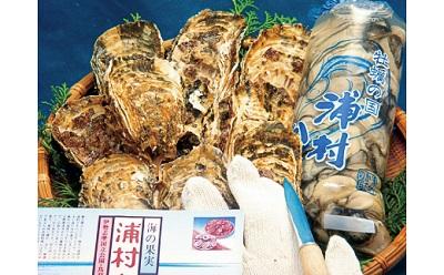 牡蠣むき身セット