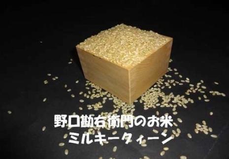 【30年産】野口勘右衛門のお米「玄米食最適米(ミルキークイーン)」玄米20kg(10㎏×2)