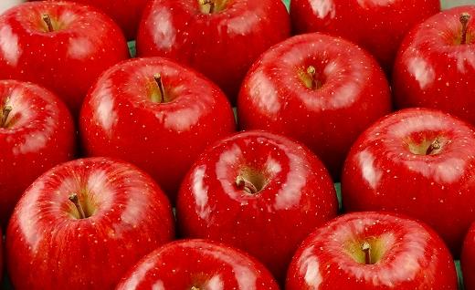 ふじむら農園の盛岡りんご『サンふじ』5kg