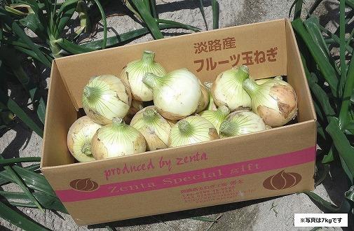 【新玉予約!】淡路島フルーツ玉ねぎ7kg・テレビや雑誌で多数紹介