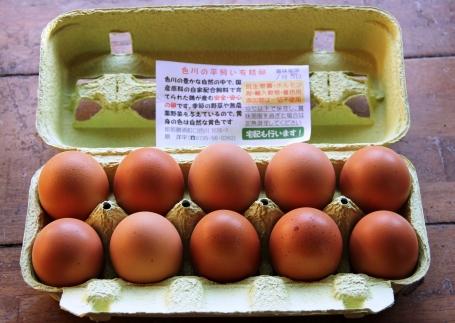 国産飼料にこだわった鶏が産む安全安心の『レモン色たまご』