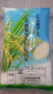 稲作を学ぶ学生が作ったお米「ミルキークイーン」5㎏×2袋【平成30年産】