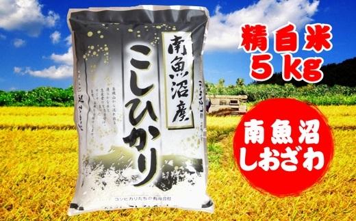 農家直送!南魚沼産コシヒカリ(塩沢産)精白米5kg