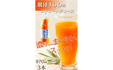 ■果汁100%田村そだちみかんジュース 970ml×3本