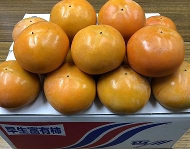【ポイント交換】三豊市産早生富有柿約7.5kg