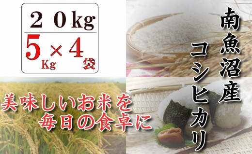 【契約栽培】南魚沼産コシヒカリ「八龍の尾」20kg(5kg×4)