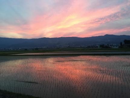 【頒布会】契約栽培 南魚沼産コシヒカリ「八龍の尾」10kg×全9回