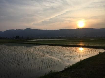 【頒布会】契約栽培 南魚沼産コシヒカリ「八龍の尾」15kg×全9回