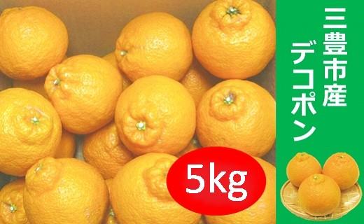 【ポイント交換】三豊市産デコポン5kg