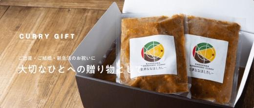想いを伝えるCURRYGIFT【真空急速冷凍カレー便】 定番8袋セット