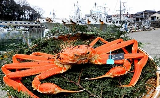 【石川県産】加能かに(ずわい蟹)生重量1.0kg×1匹