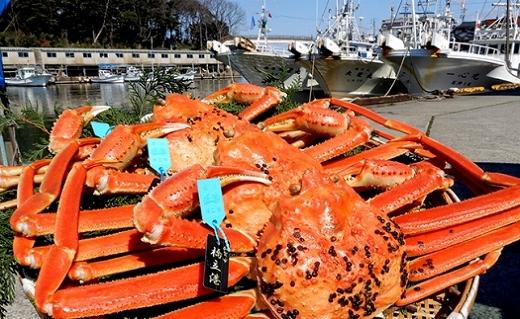 【石川県産】加能かに(ずわい蟹)生重量1.0kg×3匹