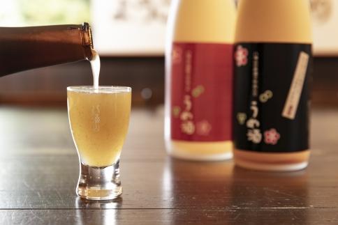八海山の焼酎で仕込んだ「にごりうめ酒」一升瓶(1800ml)