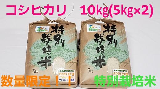 令和2年産コシヒカリ10kg(5kg×2)特別栽培米『おかだいらの恵』