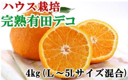 ■【ハウス栽培】完熟有田デコ(不知火)約4kg(L~5Lサイズ混合)[2021年3月~発送]【数量限定】
