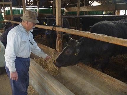 オリーブ牛すきしゃぶ二種食べ比べセットAs-18