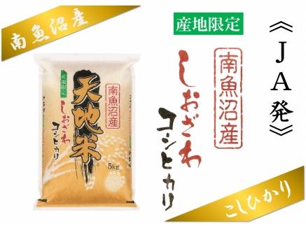 【産地限定】JAみなみ魚沼しおざわコシヒカリ「天地米」5kg