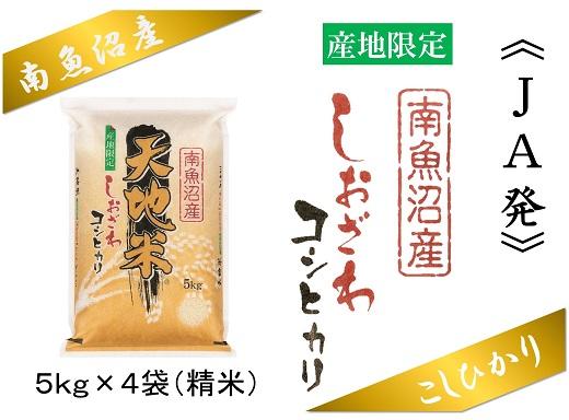 【産地限定】JAみなみ魚沼しおざわコシヒカリ「天地米」20kg