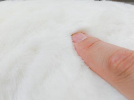 FabricoNEKOクッション(ホワイト)杉村繊維工業株式会社