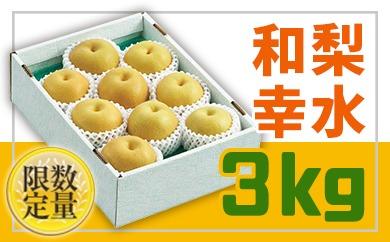 BP010♪フルーツ王国山形♪和梨【幸水】秀品3kg