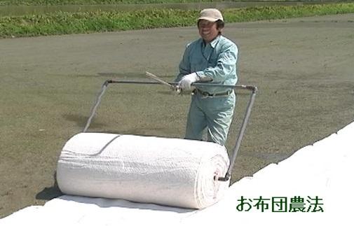 お布団農法雲洞産魚沼コシヒカリ「どん米」精米真空パック4㎏