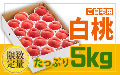 BP012♪フルーツ王国山形♪白桃5㎏【ご自宅用】