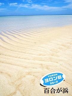 【ヨロン島】JTBふるさと納税旅行クーポン(3,000円分)