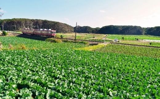 【銚子市】JTBふるさと納税旅行クーポン(3,000点分)