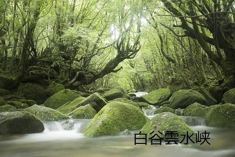 【屋久島町】JTBふるさと納税旅行クーポン(30,000円分)