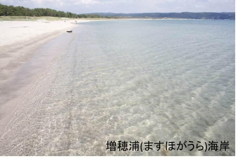 【志賀町】JTBふるぽWEB旅行クーポン(3,000点分)
