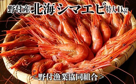 入荷!野付産北海シマエビ・特大1kg<野付漁業協同組合>