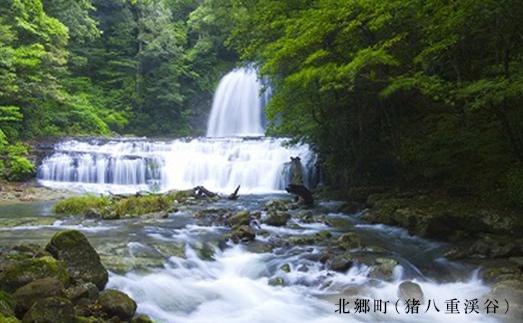 【日南市】JTBふるぽWEB旅行クーポン(15,000点分)
