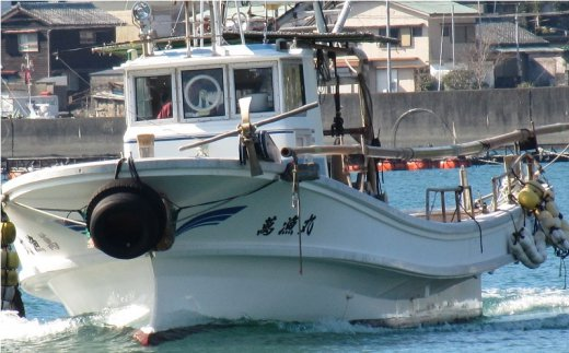 漁師直送!萬漁丸の豊後水道天然車えび活〆(3~7尾×2パック)